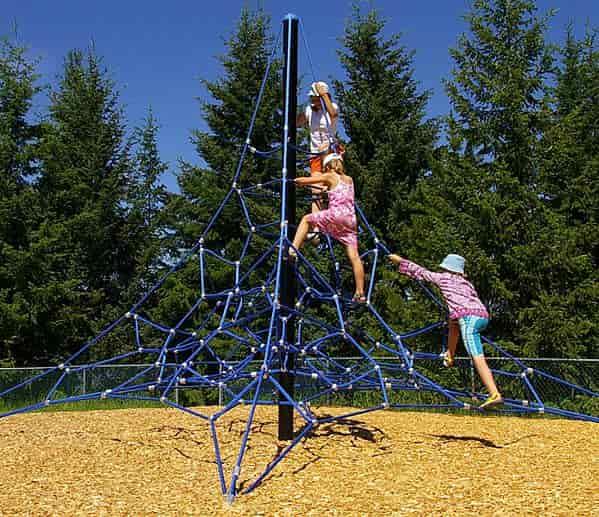dynamo net climber